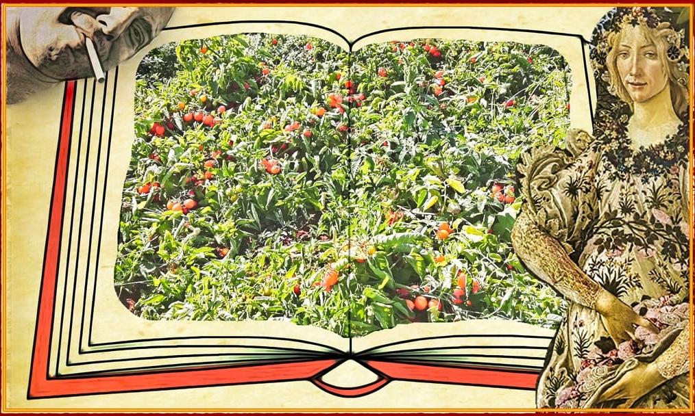 #BARVxL: L'amore (parte 1/11)