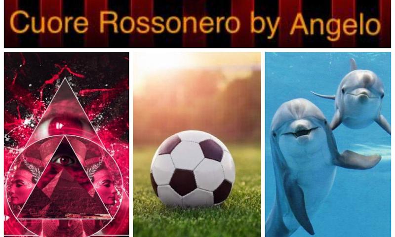 D.D.I.: Pensieri in libertà tra complotti, calcio e delfini...