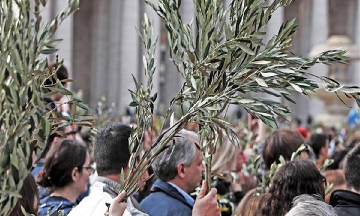 D.D.I.: Una domenica delle Palme qualche anno fa...
